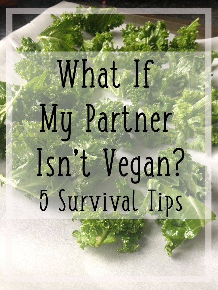 What if My Partner Isn't Vegan? 5 Survival Tips | Hey Its Camille Grey #vegan #partner #relationships