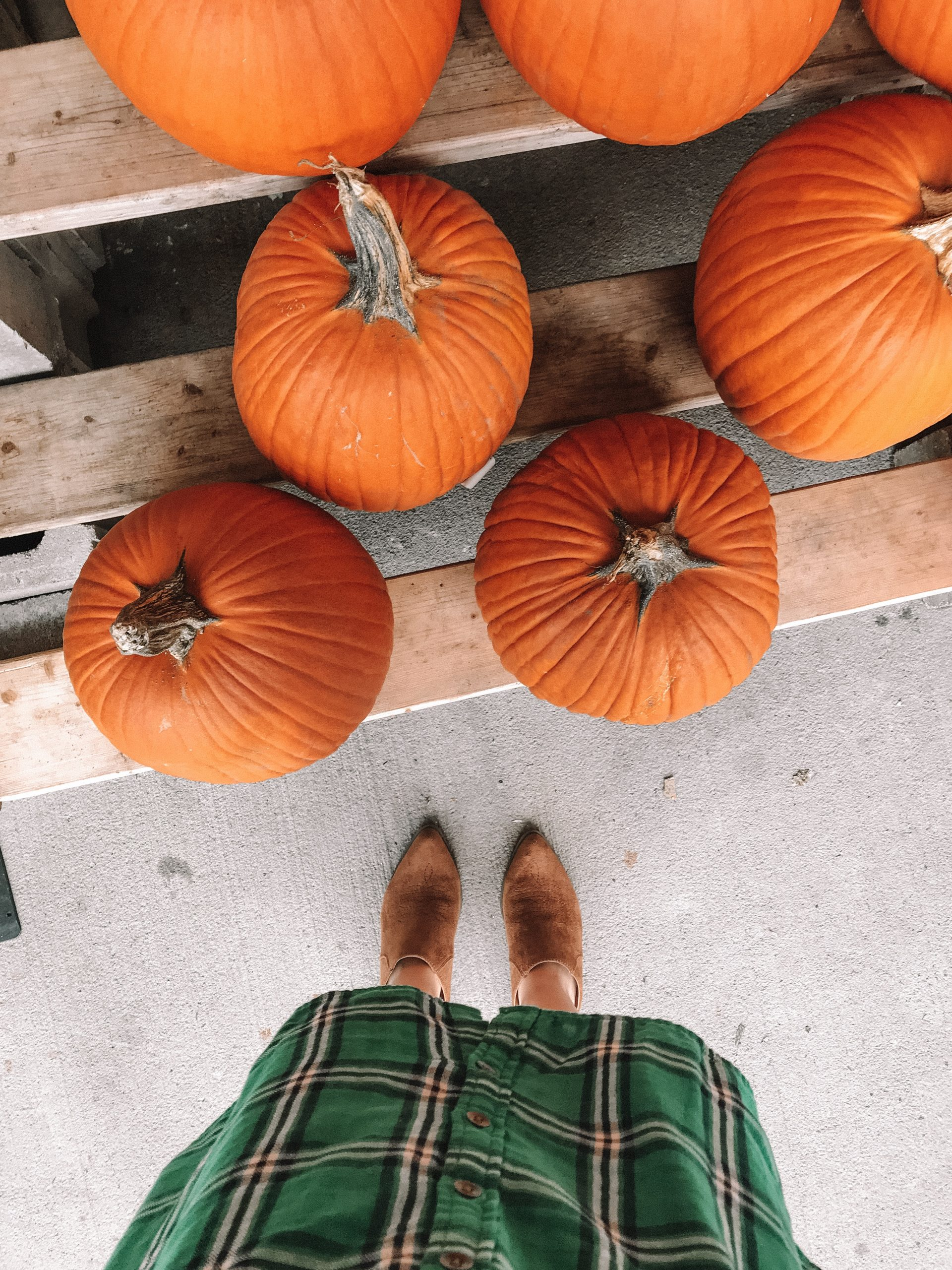 The Perfect Shoe for Fall | Hey Its Camille Grey #fall #mules #fashion