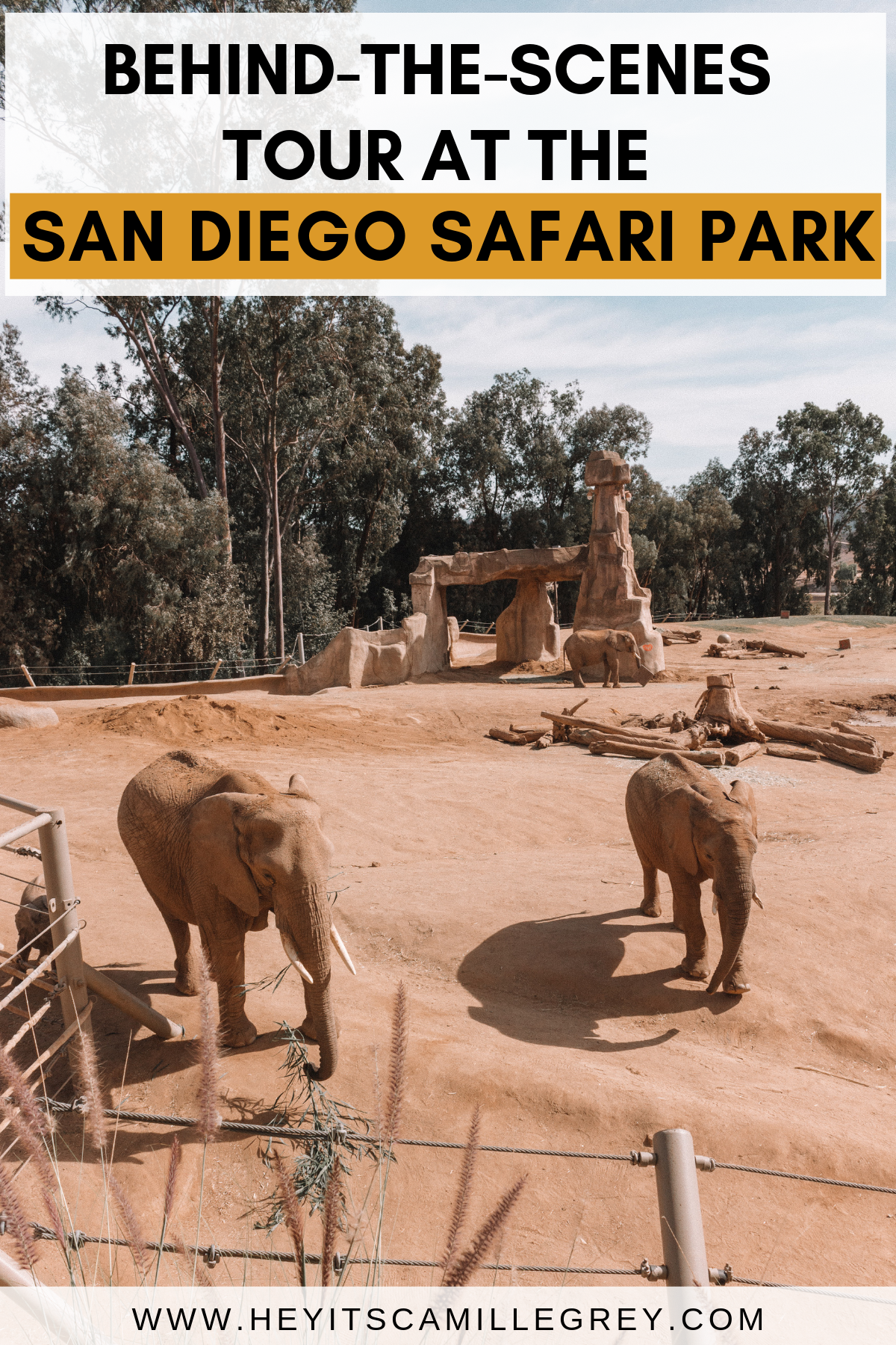 Behind-the-Scenes Elephant Tour at San Diego Safari Park | Hey Its Camille Grey #sandiego #safariapark #california #zoo #elephants
